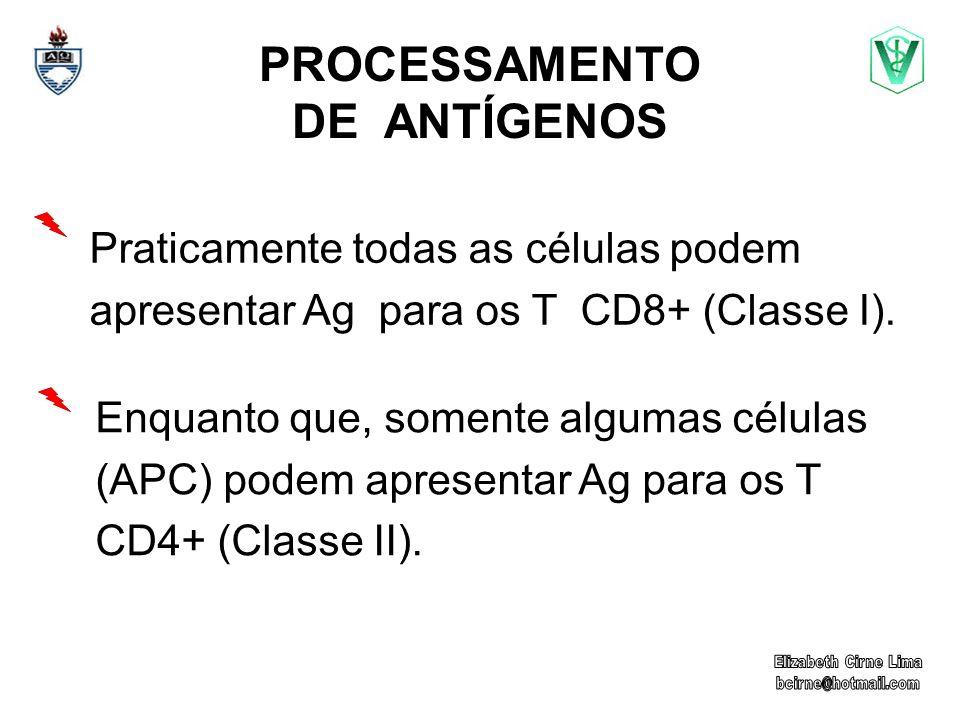 PROCESSAMENTO DE ANTÍGENOS Enquanto que, somente algumas células (APC) podem apresentar Ag para os T CD4+ (Classe II).