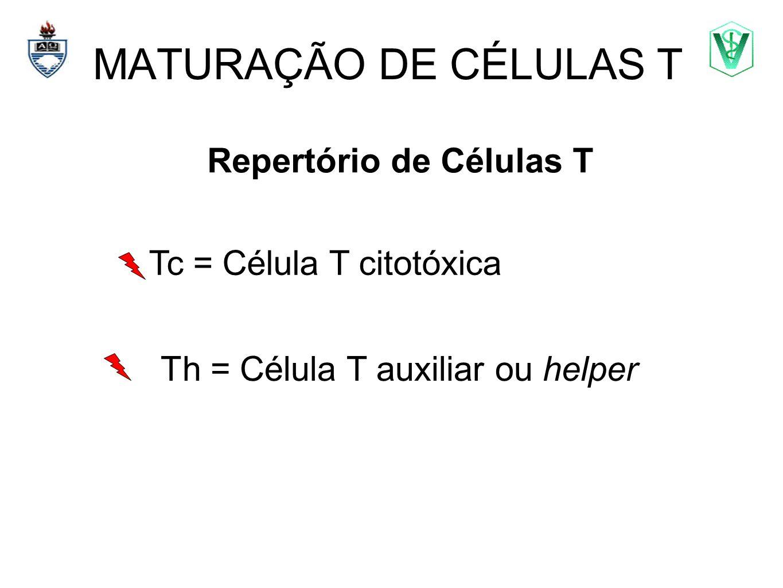 MATURAÇÃO DE CÉLULAS T Repertório de Células T Elizabeth Cirne Lima bcirne@hotmail.com Tc = Célula T citotóxica Th = Célula T auxiliar ou helper
