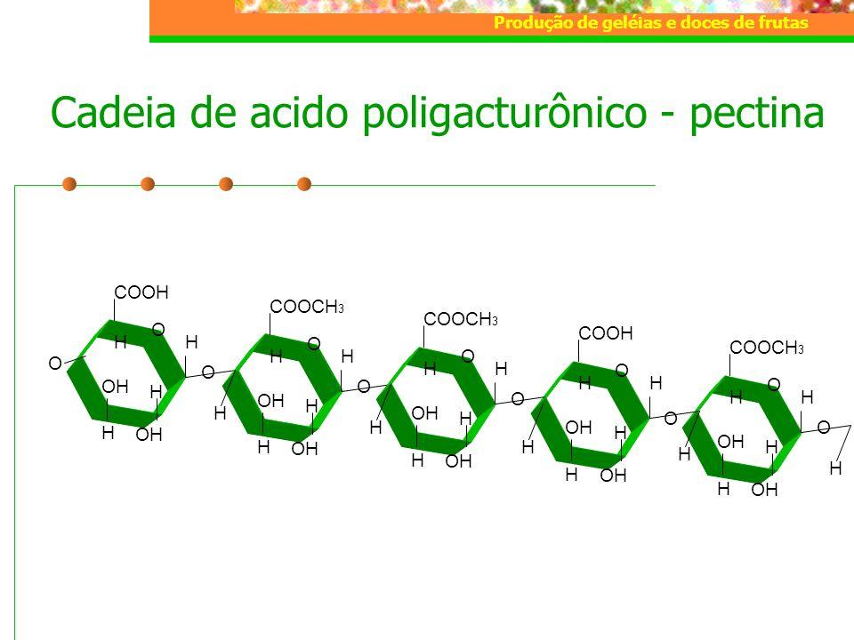 Produção de geléias e doces de frutas COOCH 3 H O O H H OH H H O COOH H O H H OH H H Cadeia de acido poligacturônico - pectina COOH H O O H OH H H O C