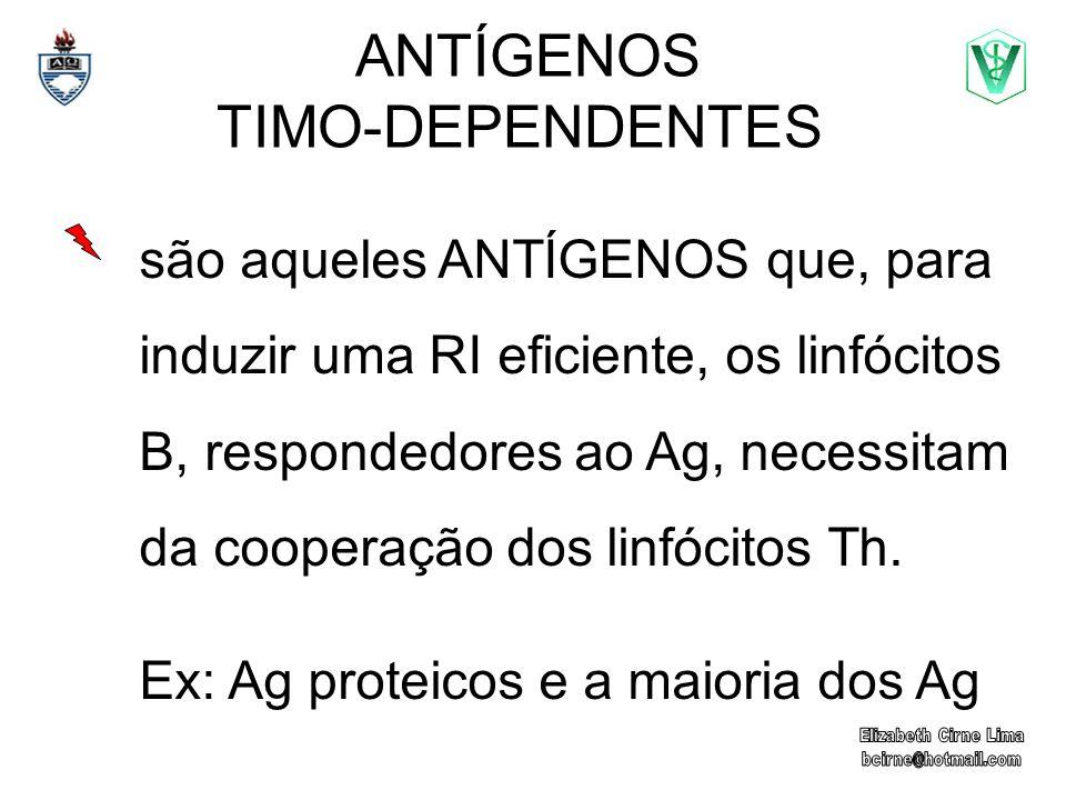 ANTÍGENOS TIMO-DEPENDENTES são aqueles ANTÍGENOS que, para induzir uma RI eficiente, os linfócitos B, respondedores ao Ag, necessitam da cooperação do