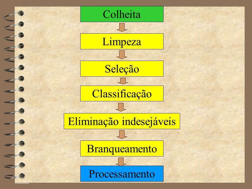 4 Melhorar o aspecto 4 Reduzir o número de microrganismos 4 Homogeneizar as matérias-primas 4 Retirar indesejáveis