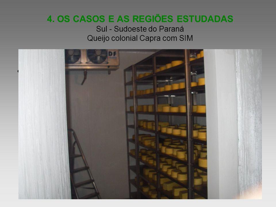 4. OS CASOS E AS REGIÕES ESTUDADAS Sul - Sudoeste do Paraná Queijo colonial Capra com SIM Informe as idéias principais de sua apresentação