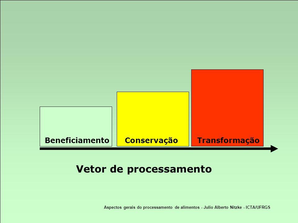 Aspectos gerais do processamento de alimentos - Julio Alberto Nitzke - ICTA/UFRGS Vetor de processamento BeneficiamentoConservaçãoTransformação