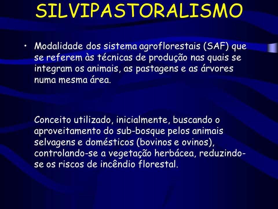 SILVIPASTORALISMO Modalidade dos sistema agroflorestais (SAF) que se referem às técnicas de produção nas quais se integram os animais, as pastagens e