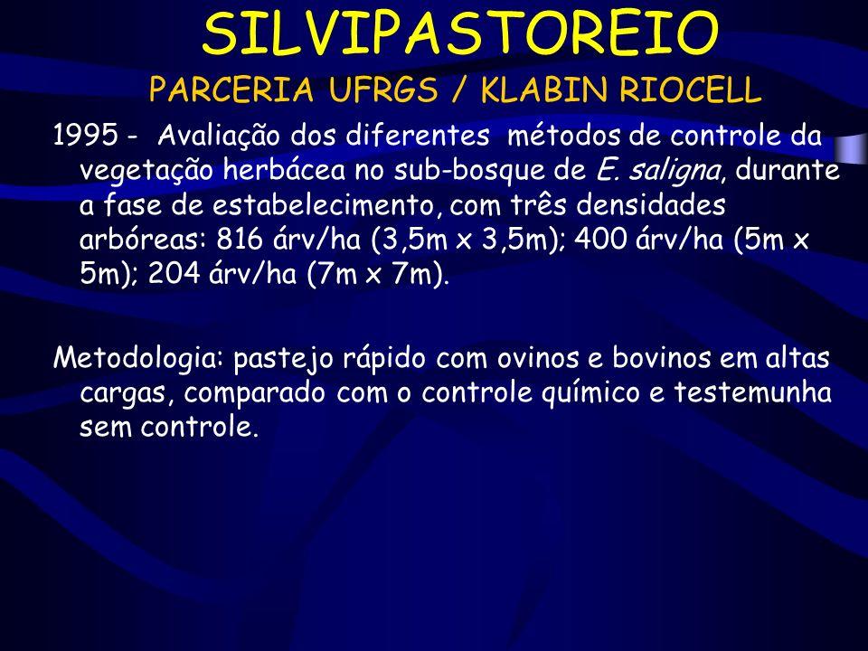 SILVIPASTOREIO PARCERIA UFRGS / KLABIN RIOCELL 1995 - Avaliação dos diferentes métodos de controle da vegetação herbácea no sub-bosque de E. saligna,