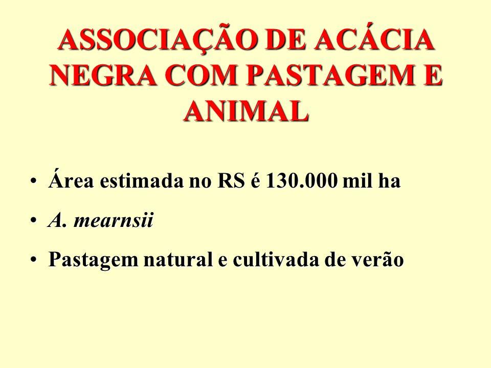 ASSOCIAÇÃO DE ACÁCIA NEGRA COM PASTAGEM E ANIMAL Área estimada no RS é 130.000 mil haÁrea estimada no RS é 130.000 mil ha A. mearnsiiA. mearnsii Pasta
