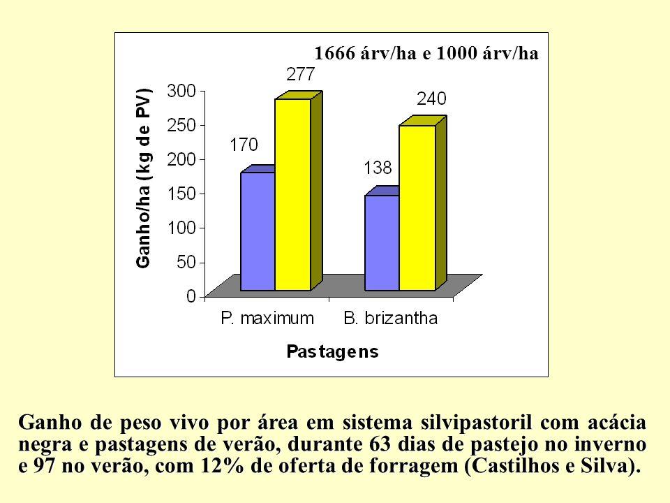 Ganho de peso vivo por área em sistema silvipastoril com acácia negra e pastagens de verão, durante 63 dias de pastejo no inverno e 97 no verão, com 1