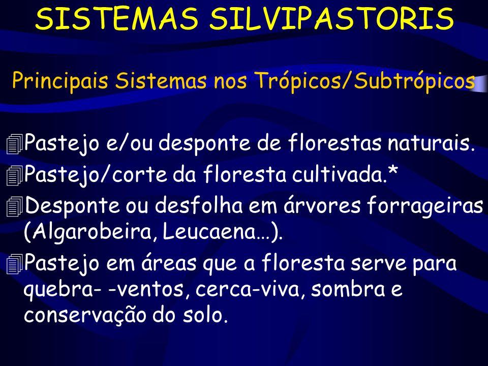 SISTEMAS SILVIPASTORIS Principais Sistemas nos Trópicos/Subtrópicos 4Pastejo e/ou desponte de florestas naturais. 4Pastejo/corte da floresta cultivada