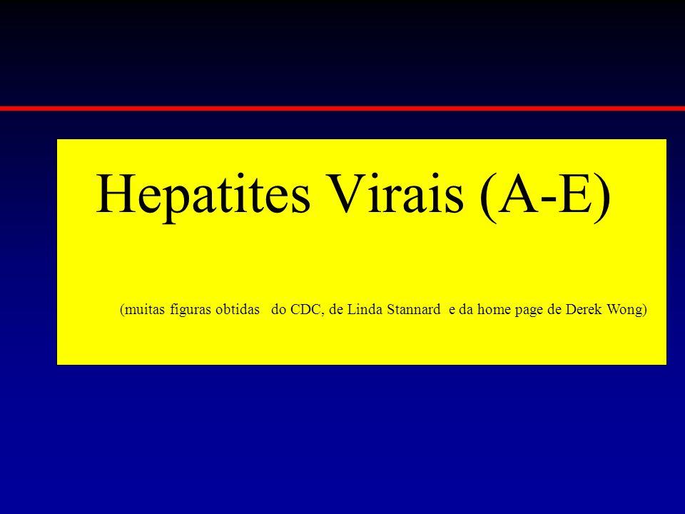 Hepatites Virais (A-E) (muitas figuras obtidas do CDC, de Linda Stannard e da home page de Derek Wong)