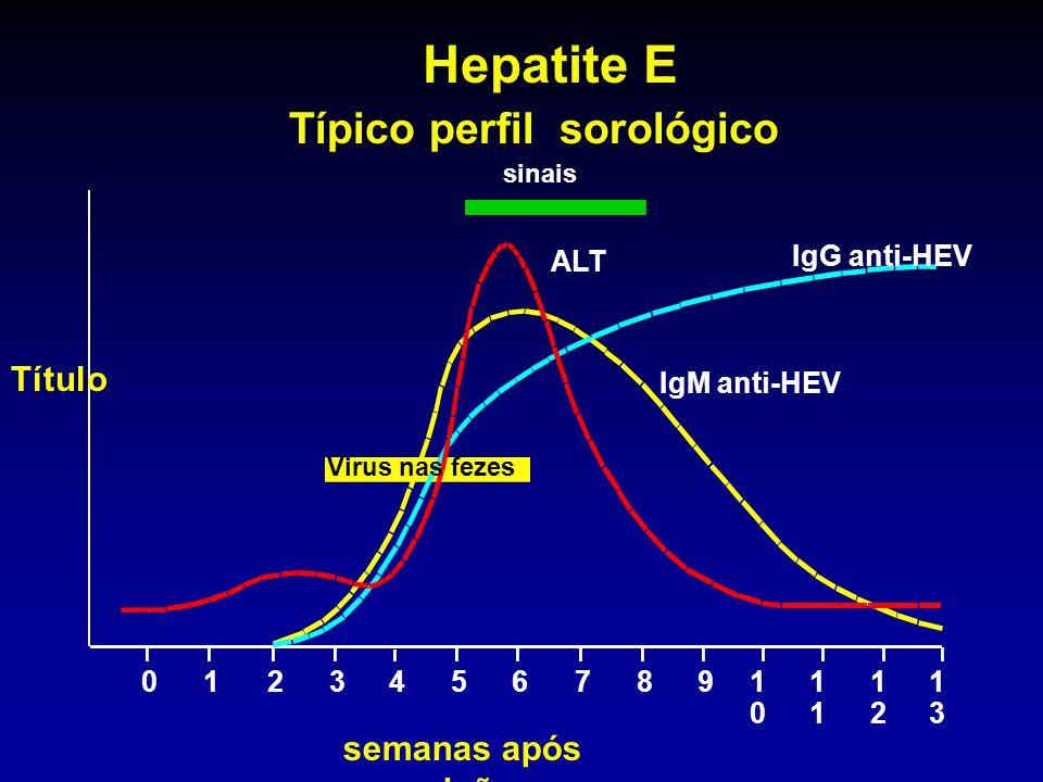 sinais ALT IgG anti-HEV IgM anti-HEV Virus nas fezes 012345678910101 1212 1313 Hepatite E Típico perfil sorológico Título semanas após exposição
