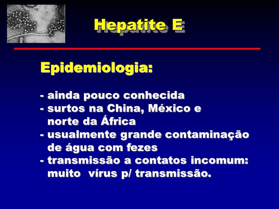 Hepatite E Epidemiologia: - ainda pouco conhecida - surtos na China, México e norte da África norte da África - usualmente grande contaminação de água