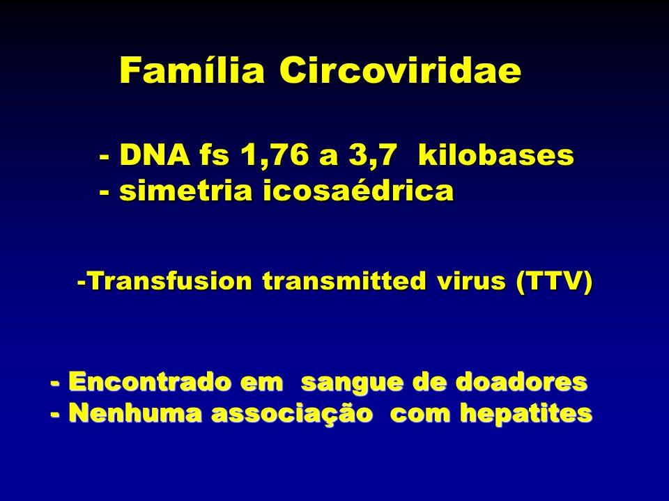 Família Circoviridae -Transfusion transmitted virus (TTV) - Encontrado em sangue de doadores - Nenhuma associação com hepatites - DNA fs 1,76 a 3,7 ki