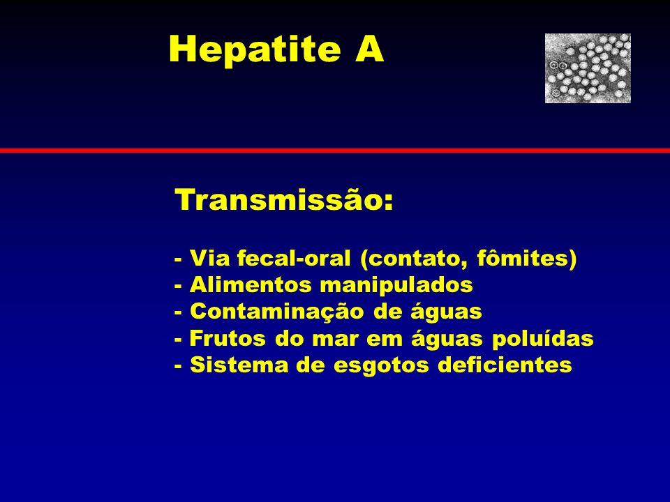 Transmissão: - Via fecal-oral (contato, fômites) - Alimentos manipulados - Contaminação de águas - Frutos do mar em águas poluídas - Sistema de esgoto