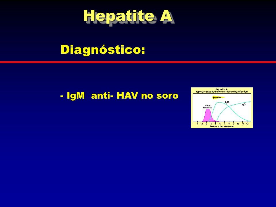 Diagnóstico: - IgM anti- HAV no soro Hepatite A