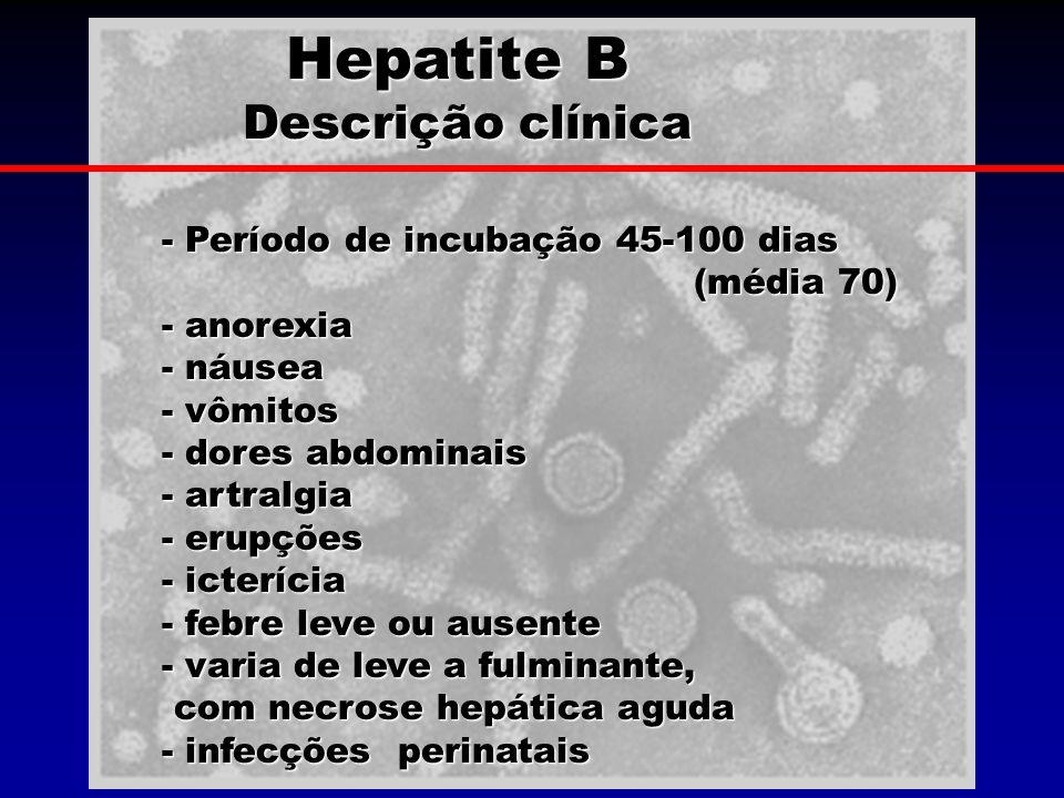 Hepatite B Descrição clínica Descrição clínica - Período de incubação 45-100 dias (média 70) - anorexia - náusea - vômitos - dores abdominais - artral