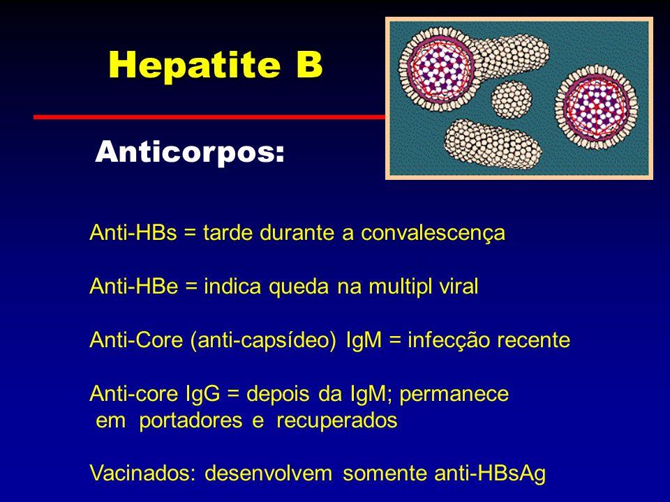 Hepatite B Anticorpos: Anti-HBs = tarde durante a convalescença Anti-HBe = indica queda na multipl viral Anti-Core (anti-capsídeo) IgM = infecção rece