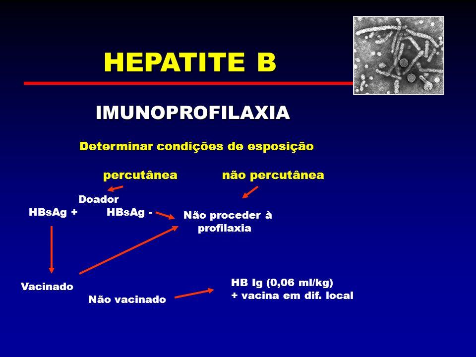 HEPATITE B IMUNOPROFILAXIA Determinar condições de esposição percutâneanão percutânea Doador HBsAg + HBsAg - Vacinado Não vacinado HB Ig (0,06 ml/kg)