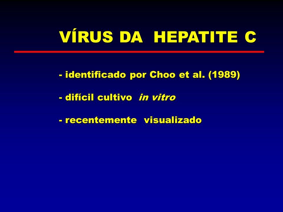 VÍRUS DA HEPATITE C - identificado por Choo et al. (1989) - difícil cultivo in vitro - recentemente visualizado