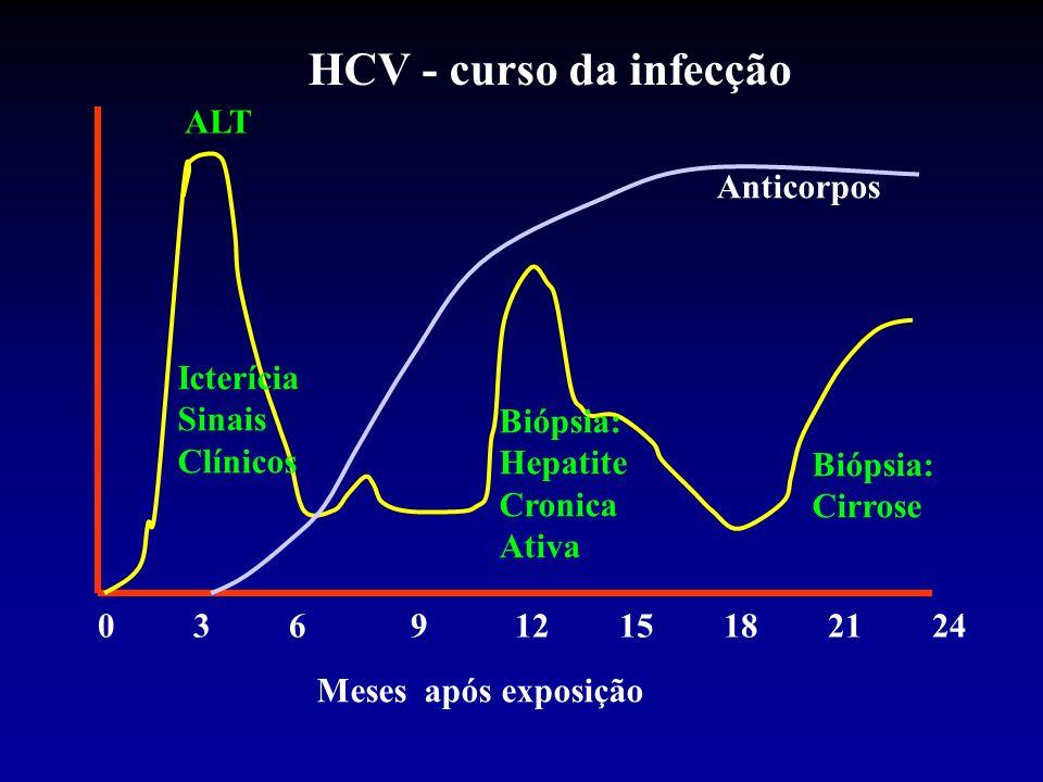 0 3 691215182124 Meses após exposição ALT Icterícia Sinais Clínicos Biópsia: Hepatite Cronica Ativa Biópsia: Cirrose Anticorpos HCV - curso da infecçã