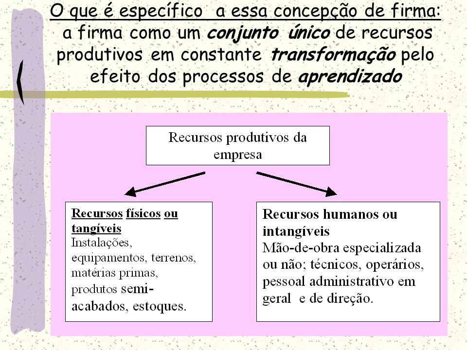 O que é específico a essa concepção de firma: a firma como um conjunto único de recursos produtivos em constante transformação pelo efeito dos process