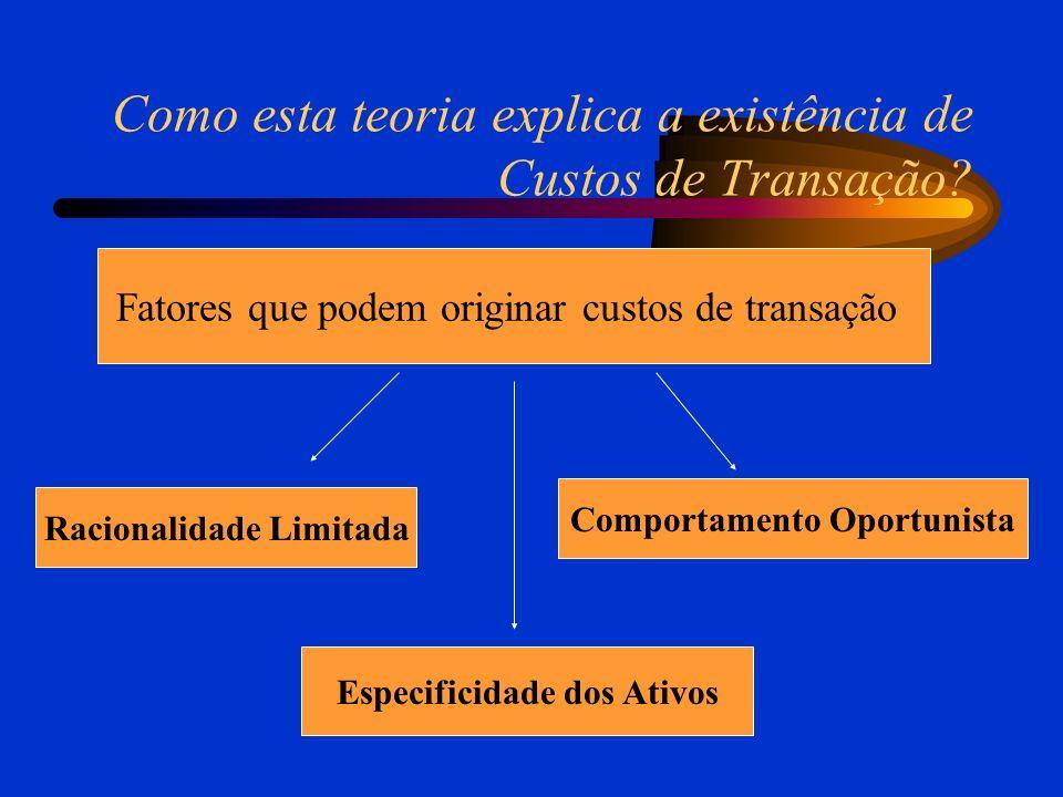 Como esta teoria explica a existência de Custos de Transação.