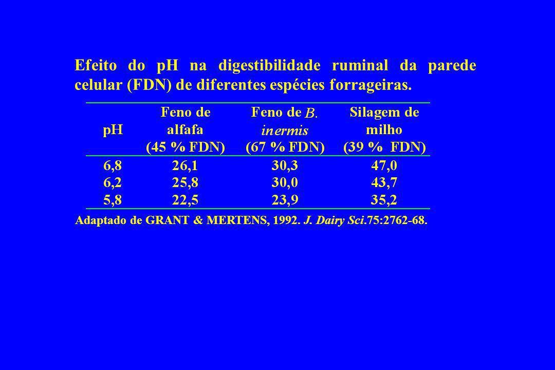Efeito do pH na digestibilidade ruminal da parede celular (FDN) de diferentes espécies forrageiras. Adaptado de GRANT & MERTENS, 1992. J. Dairy Sci.75