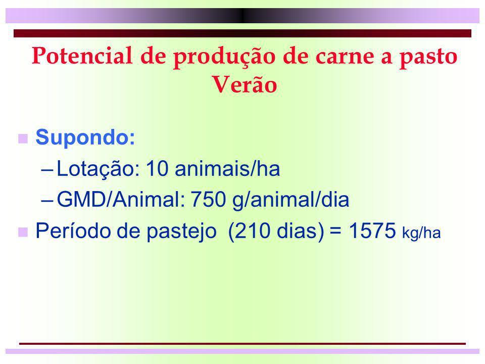Potencial de produção de carne a pasto Verão n Supondo: –Lotação: 10 animais/ha –GMD/Animal: 750 g/animal/dia n Período de pastejo (210 dias) = 1575 k