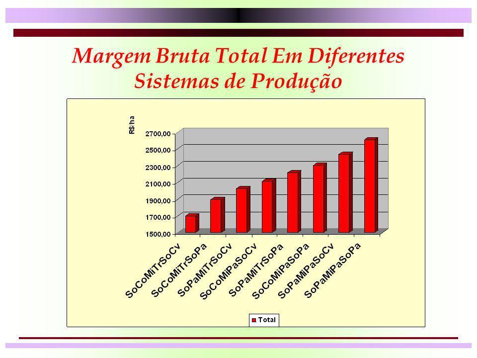 Margem Bruta Total Em Diferentes Sistemas de Produção