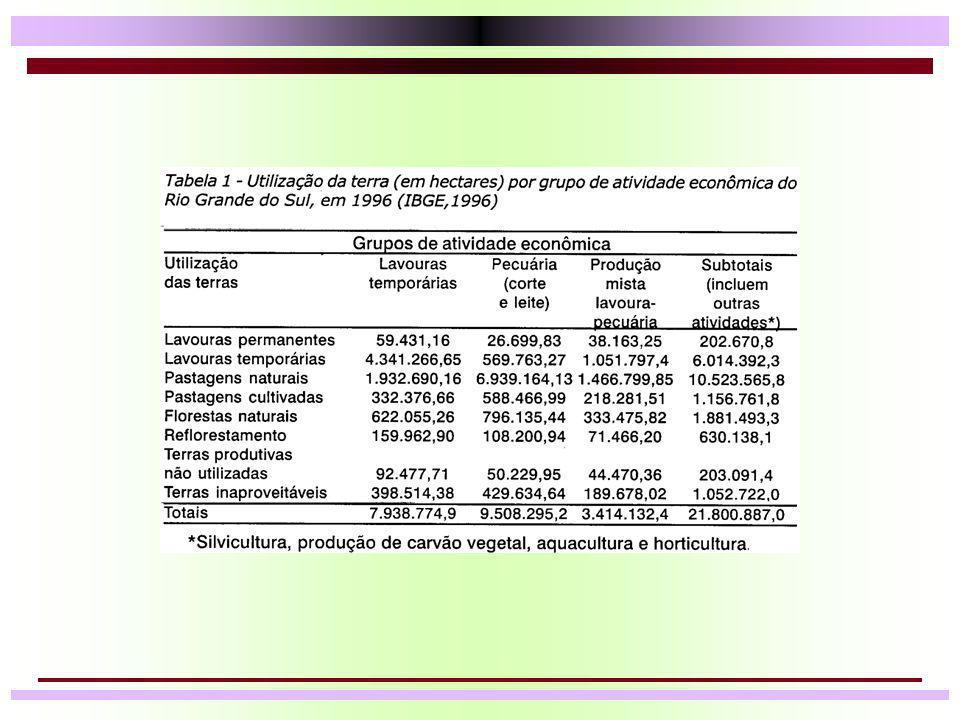 Potencial de produção de carne a pasto Verão n Supondo: –Lotação: 10 animais/ha –GMD/Animal: 750 g/animal/dia n Período de pastejo (210 dias) = 1575 kg/ha