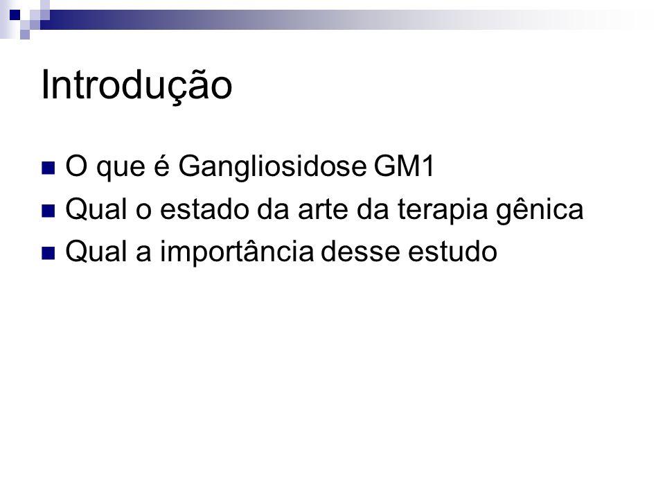 Introdução O que é Gangliosidose GM1 Qual o estado da arte da terapia gênica Qual a importância desse estudo