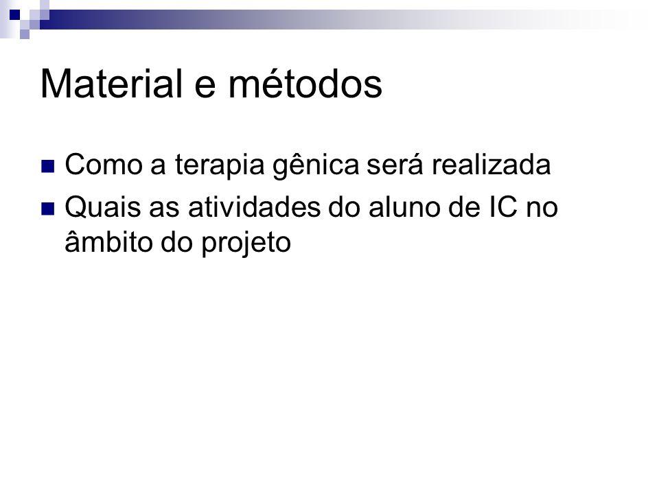 Material e métodos Como a terapia gênica será realizada Quais as atividades do aluno de IC no âmbito do projeto