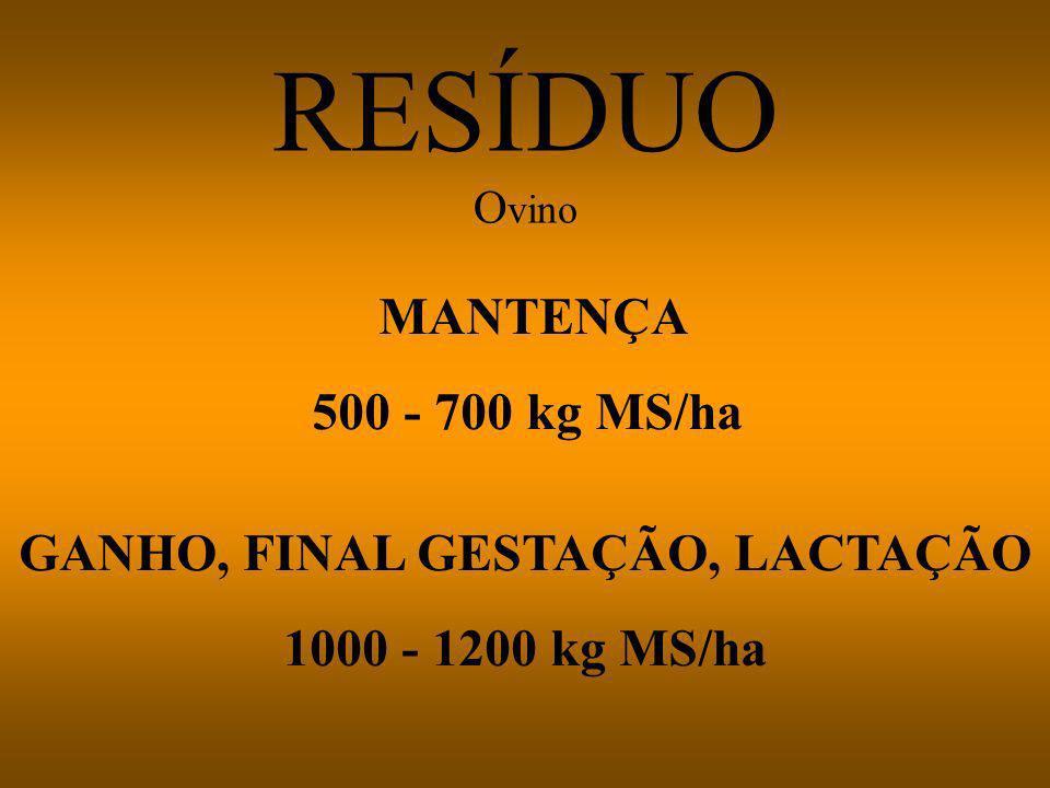 Vacas em lactação - resíduo alto (mínimo 1500 kg MS/ha) Vacas secas - resíduo baixo (1000 kg MS/ha)