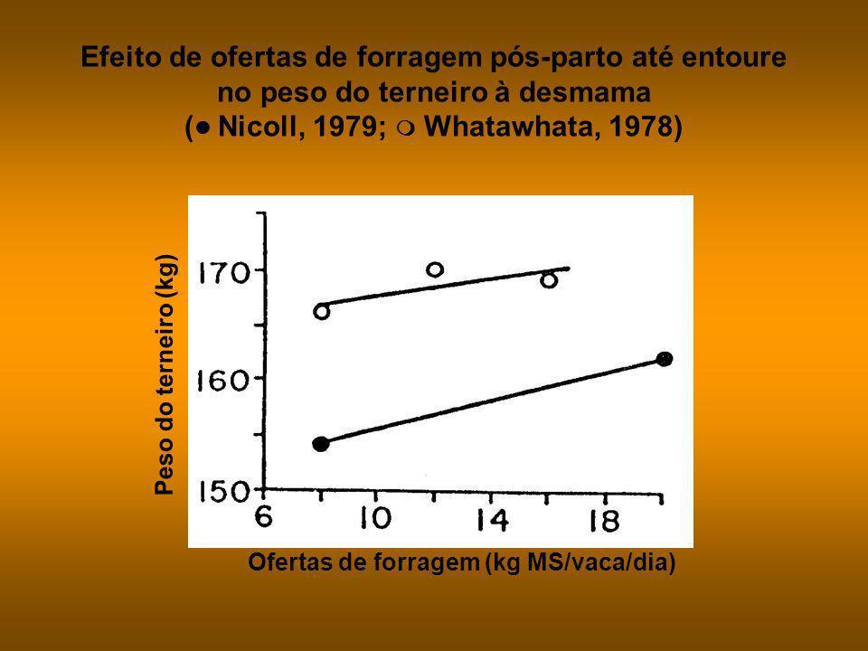 Meses em relação à parição Consumo (kg MS/vaca/dia) Sensibilidade a baixas ofertas de forragem Moderada mas crescente AltaDiminuiçãoBaixa PariçãoFinal