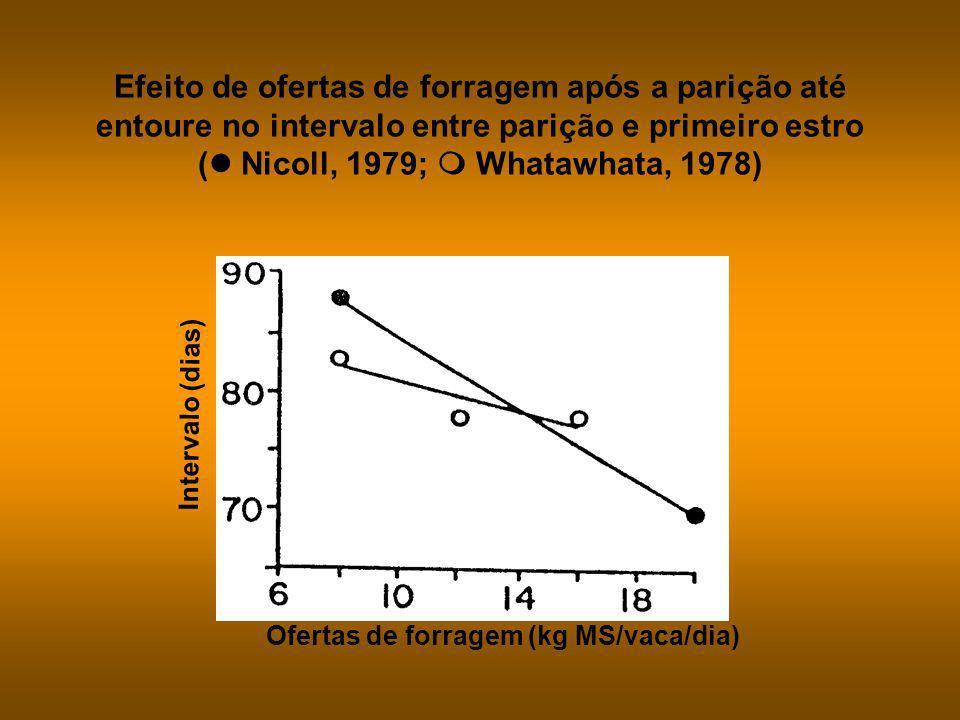 Efeito de ofertas de forragem baixas e altas durante os períodos pré e pós-parição no intervalo entre parição e o primeiro estro (Smeaton et al., s.d.