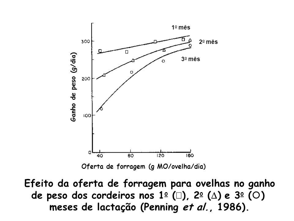 Ganho de peso (g/dia) Oferta de forragem (g MO/ovelha/dia) Efeito da oferta de forragem para ovelhas no ganho de peso dos cordeiros nos 1 o ( ), 2 o (