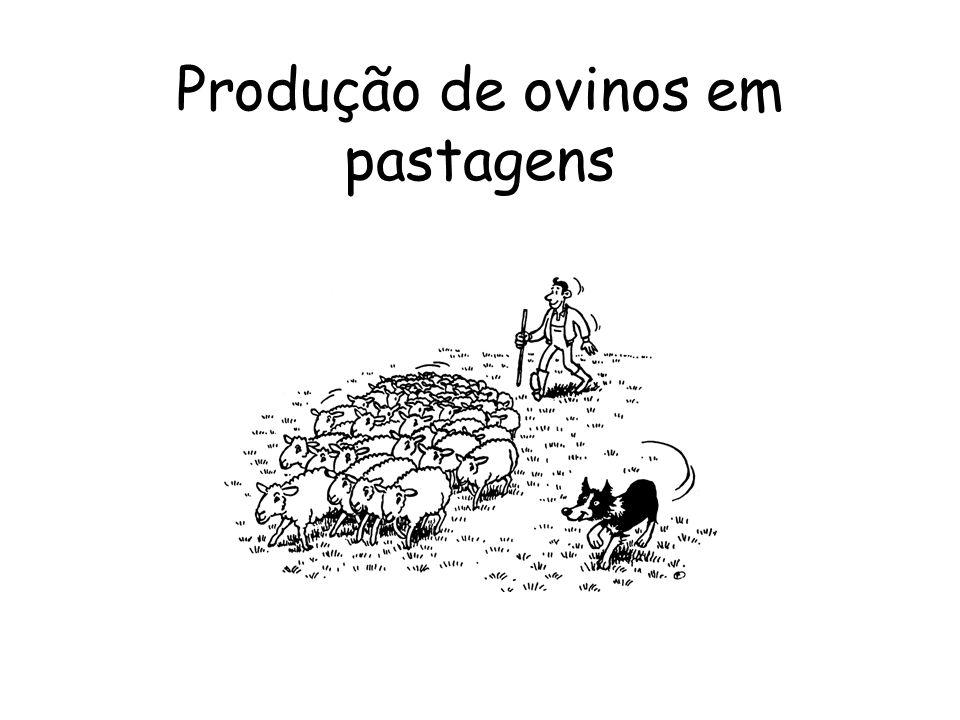 Ganho de peso (g/dia) Oferta de forragem (g MO/ovelha/dia) Efeito da oferta de forragem para ovelhas no ganho de peso dos cordeiros nos 1 o ( ), 2 o ( ) e 3 o ( ) meses de lactação (Penning et al., 1986).