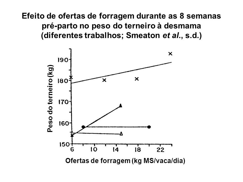 Ofertas de forragem (kg MS/vaca/dia) Peso do terneiro (kg) Efeito de ofertas de forragem durante as 8 semanas pré-parto no peso do terneiro à desmama