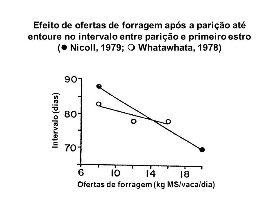 Efeito de ofertas de forragem após a parição até entoure no intervalo entre parição e primeiro estro ( Nicoll, 1979; Whatawhata, 1978) Ofertas de forr