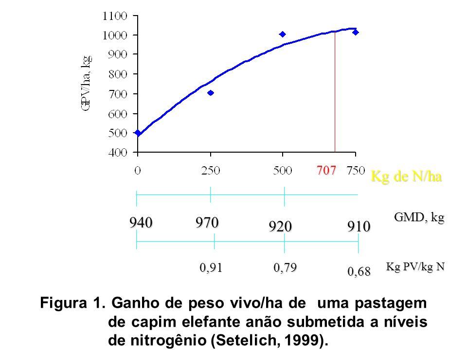 Figura 1. Ganho de peso vivo/ha de uma pastagem de capim elefante anão submetida a níveis de nitrogênio (Setelich, 1999). 910 Kg de N/ha 0,91 920 9409