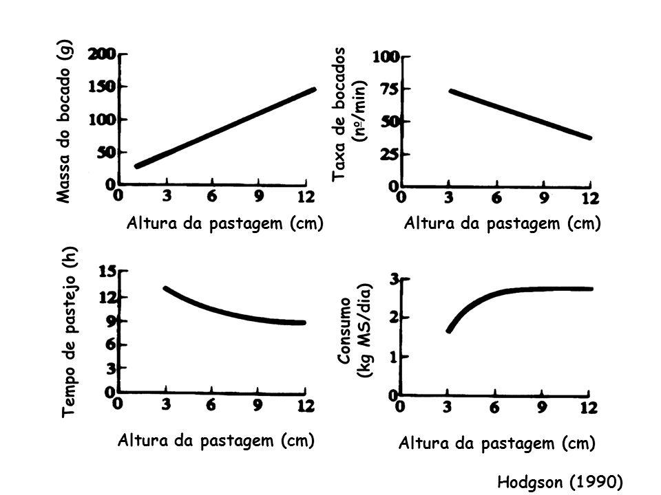 Profundidade do bocado de vacas holandesas pastejando aveia ou azevém, com ou sem aplicação de N (Lesama et al., 1999)