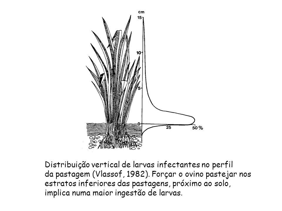 Distribuição vertical de larvas infectantes no perfil da pastagem (Vlassof, 1982). Forçar o ovino pastejar nos estratos inferiores das pastagens, próx