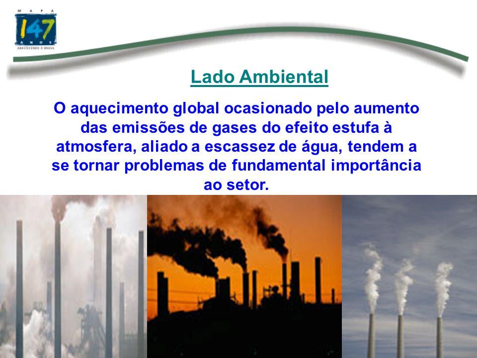 Questão Ambiental Com a entrada em vigor do protocolo de Kyoto e do Mecanismo de Desenvolvimento Limpo a agricultura deve ter papel fundamental para a redução dos gases do efeito estufa.