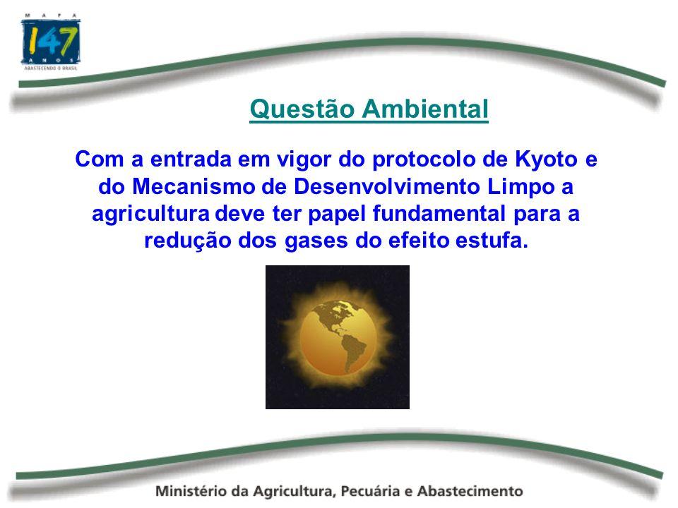 Oportunidades O Brasil possui crescentes oportunidades nessa área, por meio de projetos de redução e de seqüestro de gases, tais como: Biocombustíveis Plantio Direto Reflorestamento Biodigestores, etc.