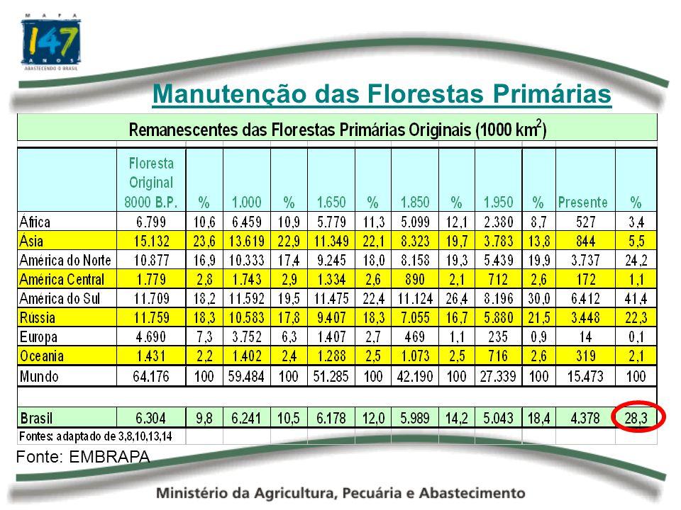 Manutenção das Florestas Primárias Ano 1.000 Ano 1.997