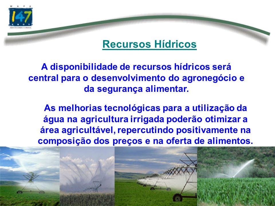 O Brasil tem uma grande extensão de terras agricultáveis, combinada com diferentes padrões climáticos, o que lhe confere perfeitas condições para ser referência na produção e exportação de energia de biomassa.