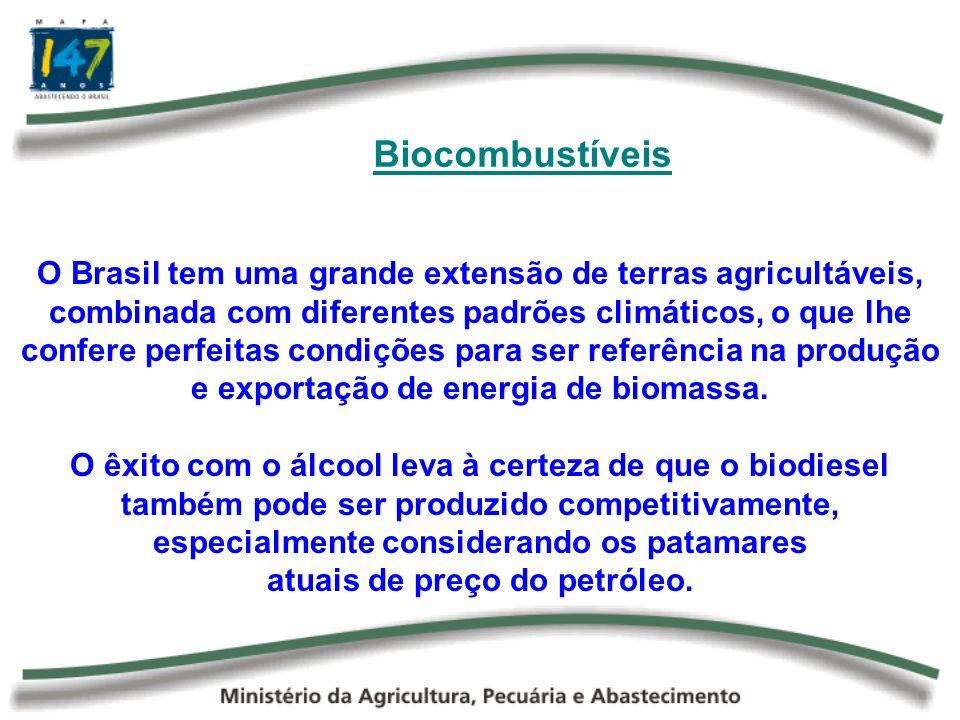 É fundamental que um programa de produção e consumo de biocombustíveis seja sustentado por um tripé de equilíbrio: agricultura alimentar, a agricultura energética e o respeito ao meio ambiente.