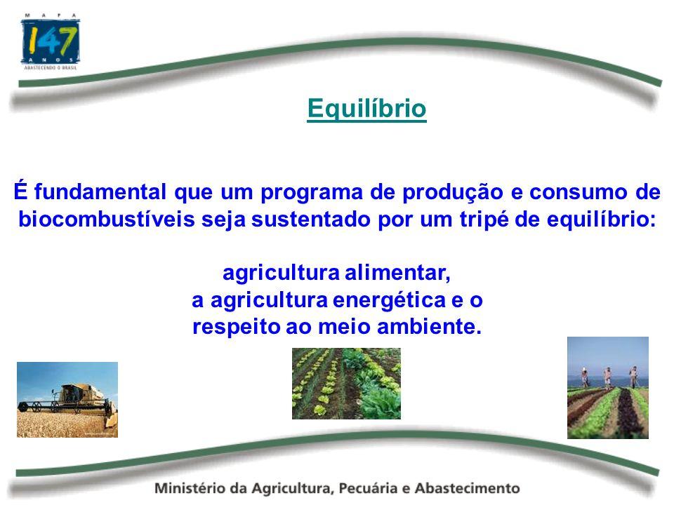 O Desafio do Milho Para o Brasil, do ponto de vista da demanda, estima-se que o consumo de milho por parte do segmento animal irá aumentar 36,9% no período entre 2005 e 2015, totalizando 42,54 milhões de toneladas no final do período de análise.