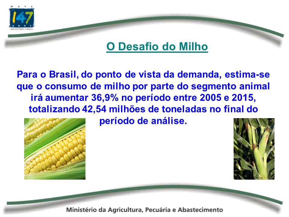 O Desafio do Milho O consumo do milho será impulsionado principalmente pelos segmentos da avicultura e da suinocultura, que representarão cerca de 76% do consumo animal e aproximadamente 60% da demanda doméstica.