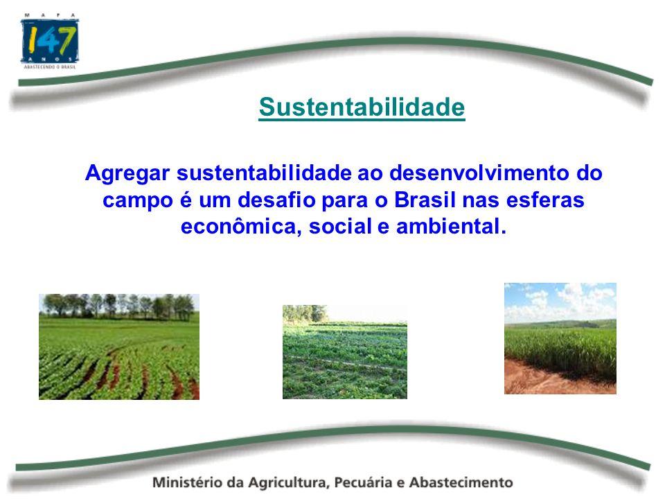 Para Refletir A fome no mundo não é produto da falta de alimentos e nem, tampouco, da incapacidade dos produtores agrícolas de ofertar mais comida.