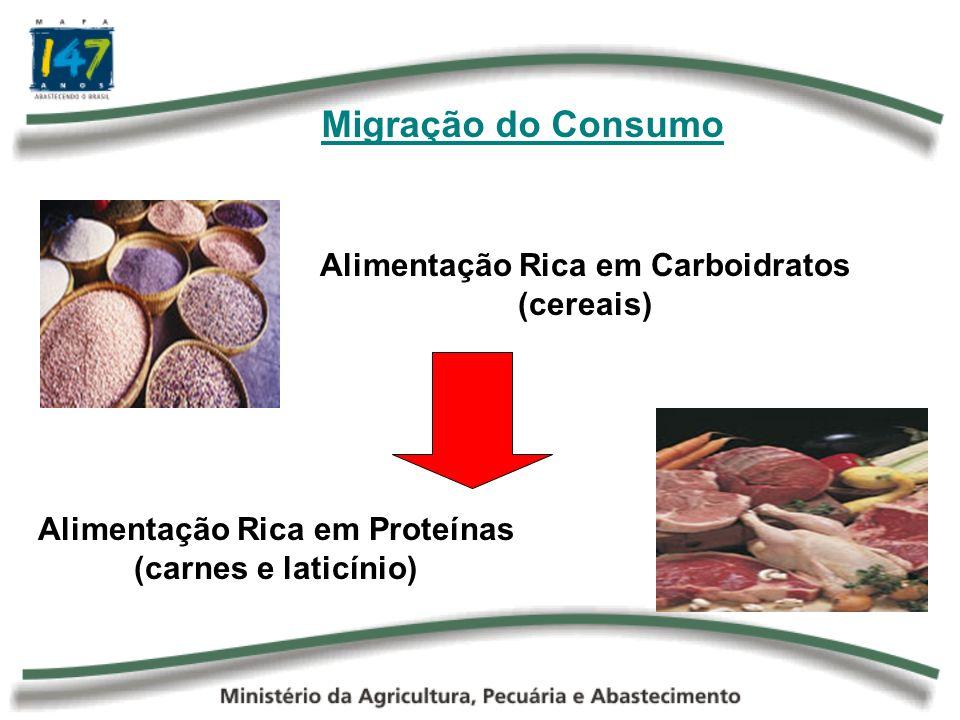 Tendências Brasileiras O crescimento da população e o da renda nos próximos dez anos aumentará consideravelmente a demanda por alimentos.